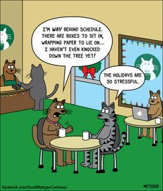 cats stressed at the Christmas holidays   The Bent Pinky by Scott Metzger