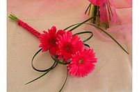 Fuscia pink gerbera daisies as my flowers? Simple but gorgeous!