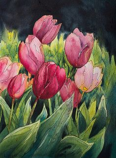 Pink Tulips by Linda Virio, via Flickr