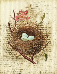 Steve's dad could paint/draw me a nest like this, only with purple/blue hydranga's as the flowers!