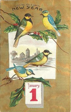 New Year Yellow Blue Birds Holly Berry Branch January 1 Gold Back Emboss Germany | eBay