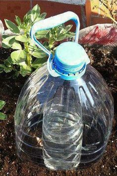 Grow Plants Using 10x Less Water Using Solar-Drip Irrigation! …