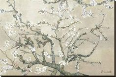 Almond Branches in Bloom, San Remy, c.1890 (tan) Print by Vincent van Gogh - AllPosters.co.uk