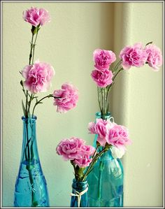 I love carnations, remind me of middle school, and I like the way they smell