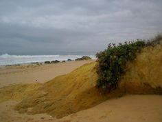 salgados beach, albufeira, portugal by tone lepsøe