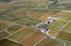 Château Sociando Mallet Baseball Field, Bordeaux, Stone Driveway, Wine Vineyards, Bordeaux Wine