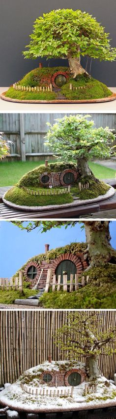 Hobbit house mini-garden - welcome to Hobbiton!