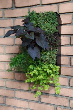 GroVert Vertical Garden Planter like the plants