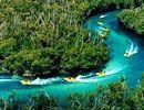 Jungle Tours, Cancún, México.  Excursiones de 2.5 hr en motos acuáticas de alta velocidad.  (998) 848-8327 pág. web  Adultos $60 por persona USD(Más 7 USD entrada al Parque Marino)  Salidas a las 9, 12, 14:30, 15 hr  En Aqua World y Aqua Tours.