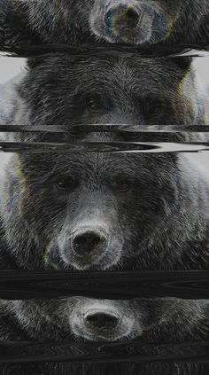 Bear Glitch Art Print