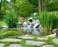 bassin aquatique pour déco de jardin moderne