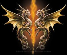 Small Dragon Tattoos, Dragon Tattoo Designs, Magical Creatures, Fantasy Creatures, Fantasy Dragon, Fantasy Art, Dragon Dreaming, Dragon Illustration, Anne Stokes