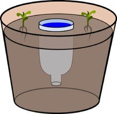 Moestuin | Watergeefsysteem voor grote plantenpotten Door Gonny77