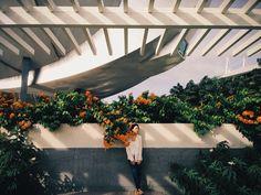 Flower girl #vscocam | josephpicture | VSCO Grid