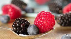 Candida Diet Recipes : Best Staple Foods & Recipes For Candida Cleanse Candida Cleanse, Cleanse Diet, Cleanse Recipes, Juice Cleanse, Lung Cleanse, Lung Detox, Cranberry Benefits, Candida Diet Recipes, Goji
