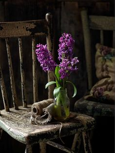 Hyacinths in the dark, and old chair, a spool of string - an unlikely pairing but a magical one in the artist's imagination.
