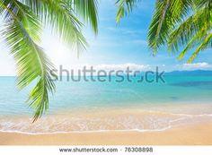 Zee Strand Stockfoto's, afbeeldingen & plaatjes | Shutterstock