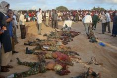 Forty-eight corpses of persons killed by Boko Haram terrorists during an oil exploration to the Lake Chad Basin have been brought to the Maiduguri Teaching Lake Chad, Boko Haram, Insurgent, Slay, Soldiers, Around The Worlds, Scene, Explore, Basin