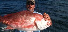 Destin Florida Deep Sea Fishing Charters