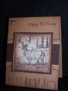 I needed a man card.and came across this one, I cased it from chendrickson...here's the card http://www.splitcoaststampers.com/gallery/photo/1947305?&what=keywords&si=masculine birthday  I turned it and the trees on the bottom,distress the edges, added gems instead, changed dsp... TFL
