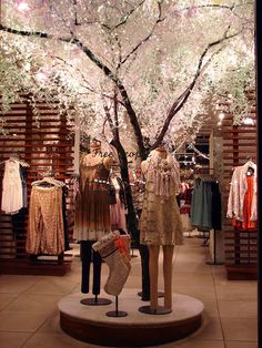 Beautiful Window Displays!: free people