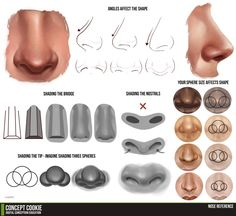 Nose Tutorial Resource by *ConceptCookie on deviantART