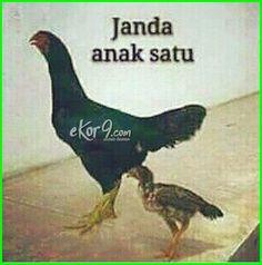 Cute Cartoon Pictures, Funny Photos, Jokes Quotes, Memes, Beautiful Muslim Women, Cartoon Jokes, Quotes Indonesia, Stock Foto, Islamic Quotes