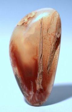 Oregon Sagenite Agate