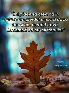 Ba imi trebuia ,dar tot l-am pierdut . Cute Love Quotes, More Than Words, Live Love, True Words, Christian Quotes, Motto, Favorite Quotes, Texts, Qoutes