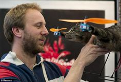 Cats away! Artist turns his dead pet into flying helicopter after it is killed by a car