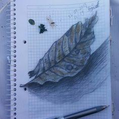 doğa da ki boyalar~