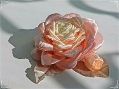 Нежная роза 🌹