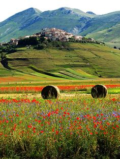What you must know about Italian Language for your Italian Vacation Perugia Italy, Umbria Italy, Oh The Places You'll Go, Places To Visit, Wonderful Places, Beautiful Places, Italy Tours, Destinations, Italy Travel