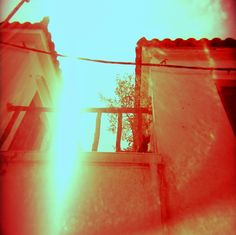 """The Sun Cat""  Skiathos, Greece  © Chris Trew / Plastic Cameras 2012"