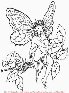 ausmalbilder feen | hand embroidery | fairy coloring pages, fairy coloring und butterfly