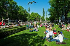 100 tapahtumaa maalla ja merellä, katso parhaat palat Helsinki-päivästä | Helsingin Uutiset