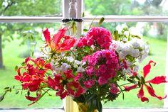 Blumenfenster www.sonjarieser.ch