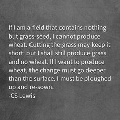 I've already been 'plowed up' lol. time to sow, baby