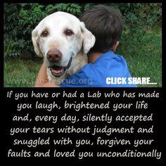 "Both my sweet Bella & Sirius ""Jack"" Animal Lover Quotes, Dog Quotes, Mans Best Friend, Girls Best Friend, Best Friends, Lab Rescue, Animal Rescue, I Love Dogs, Puppy Love"