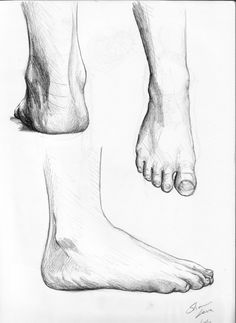 And now I drew some feet Landscape Pencil Drawings, Pencil Art Drawings, Art Sketches, Feet Drawing, Pencil Art Love, Anatomy Images, Human Sketch, Anatomy Drawing, Photography Gallery