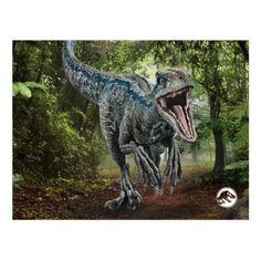 Jurassic World Blue - Nature's Got Teeth Postcard Blue Jurassic World, Jurassic World Movie, Jurassic Park Party, Jurassic World Dinosaurs, Jurassic World Fallen Kingdom, Jurassic Park Merchandise, Godzilla, Running Drawing, Jurrassic Park