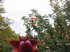 guck mal miros-reisen.blogspot.de