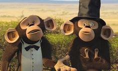 Madagascar monkeys