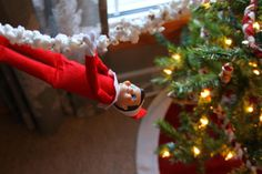 We welcomed a visitor to our house this weekend, and we've decided to keep him here until Christmas! Grandma Mary surprised Cruz with an...