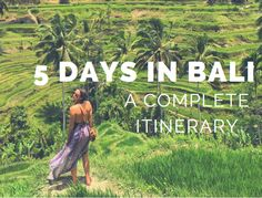 hotel ideas Here is my complete itinerary for 5 days in Bali, including transportation, activities and hotels. I hope you have as much fun as I did! Bali Travel Guide, Asia Travel, Laos, Places To Travel, Places To Go, Bali Baby, Bali Holidays, Gili Island, Merian