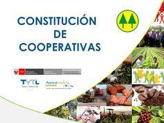 CONSTITUCIÓN DE COOPERATIVAS> Chart, Coops, Financial Statement, Activities, Law