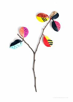 branche colorée