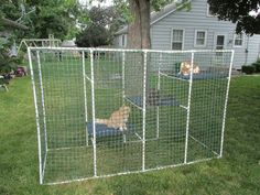 DIY portable outdoor cat enclosure. Toothless can have safe fun, and not get devoured by dogs