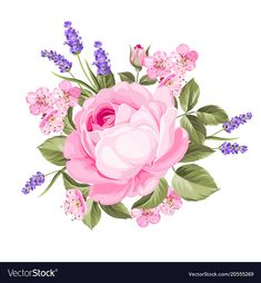 Spring flowers bouquet vector image on VectorStock Arte Floral, Floral Rosa, Spring Flower Bouquet, Spring Flowers, Bouquet Flowers, Watercolor Cards, Watercolor Flowers, Lavender Flowers, Beautiful Flowers