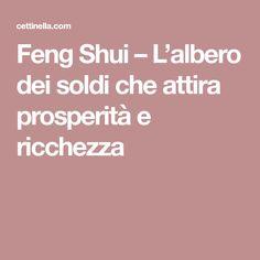 Feng Shui – L'albero dei soldi che attira prosperità e ricchezza